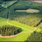 Voorstelling: Als bomen konden spreken